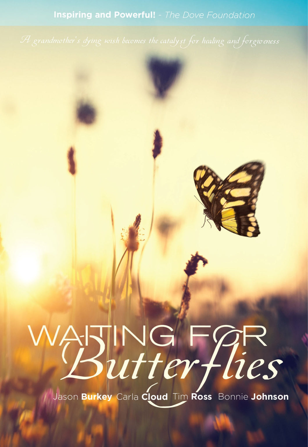 DVD-Waiting For Butterflies