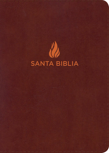 Spanish- RVR 1960 Hand Size Giant Print Bible (Biblia Letra Grande Tamano Manual)-Brown Bonded Leather
