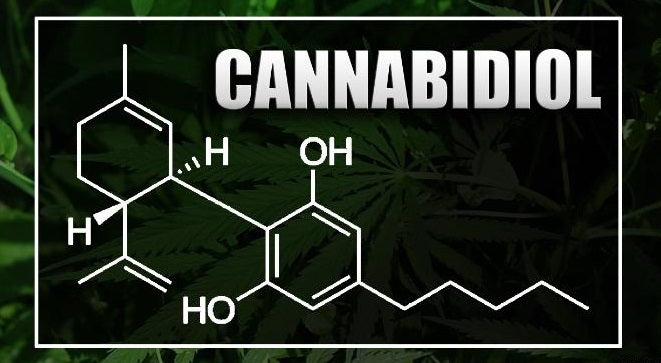 CBD-oil - FAQ