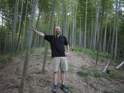 The founder Brett in the middle of organically grown moso bamboo forest