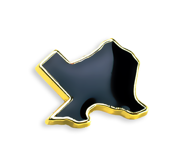 'Texas' Black/Gold Pin