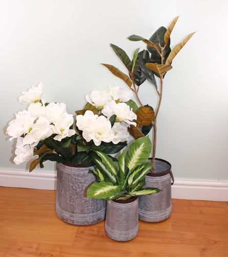 Set of 3 Bucket Style Metal Garden Planters