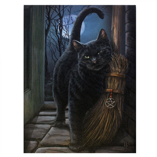 'Brush With Magick' (Cat) Canvas Plaque by Lisa Parker - 19 x 25cm