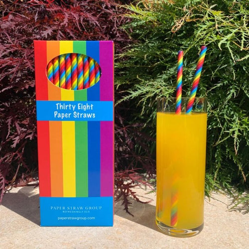 Box of 38 Rainbow Slim Paper Straws - Box of 38