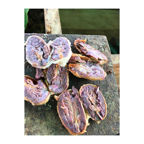 Fermented Cacao Seeds