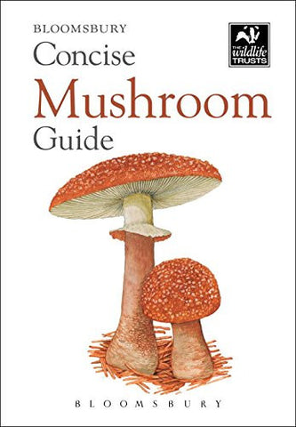 Concise Mushroom Guide (Concise Guides)