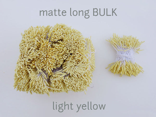 stamen matte long light yellow bulk