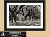 Avenue of Oaks, Boone Hall Plantation, Black and White Photo, Framed Print