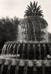 Charleston Pineapple Fountain, Black and White Photograph - Black and White Photography by Andy Moine