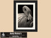 Pink Flamingo, Nature Photography, Bird Watching, Ocala, Florida, Black and White Photo - Black and White Photography by Andy Moine