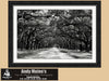 Savannah Georgia Black and White Photo, Wormsloe Plantation, Avenue of Oaks - Black and White Photography by Andy Moine