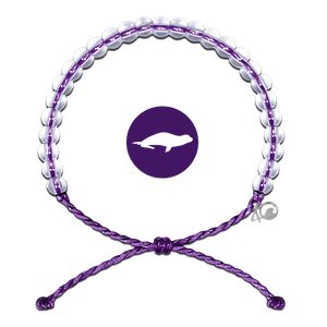 4Ocean Purple Monk Seal Bracelet