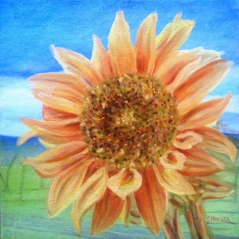 Luminous Sunflower by Susan Miller
