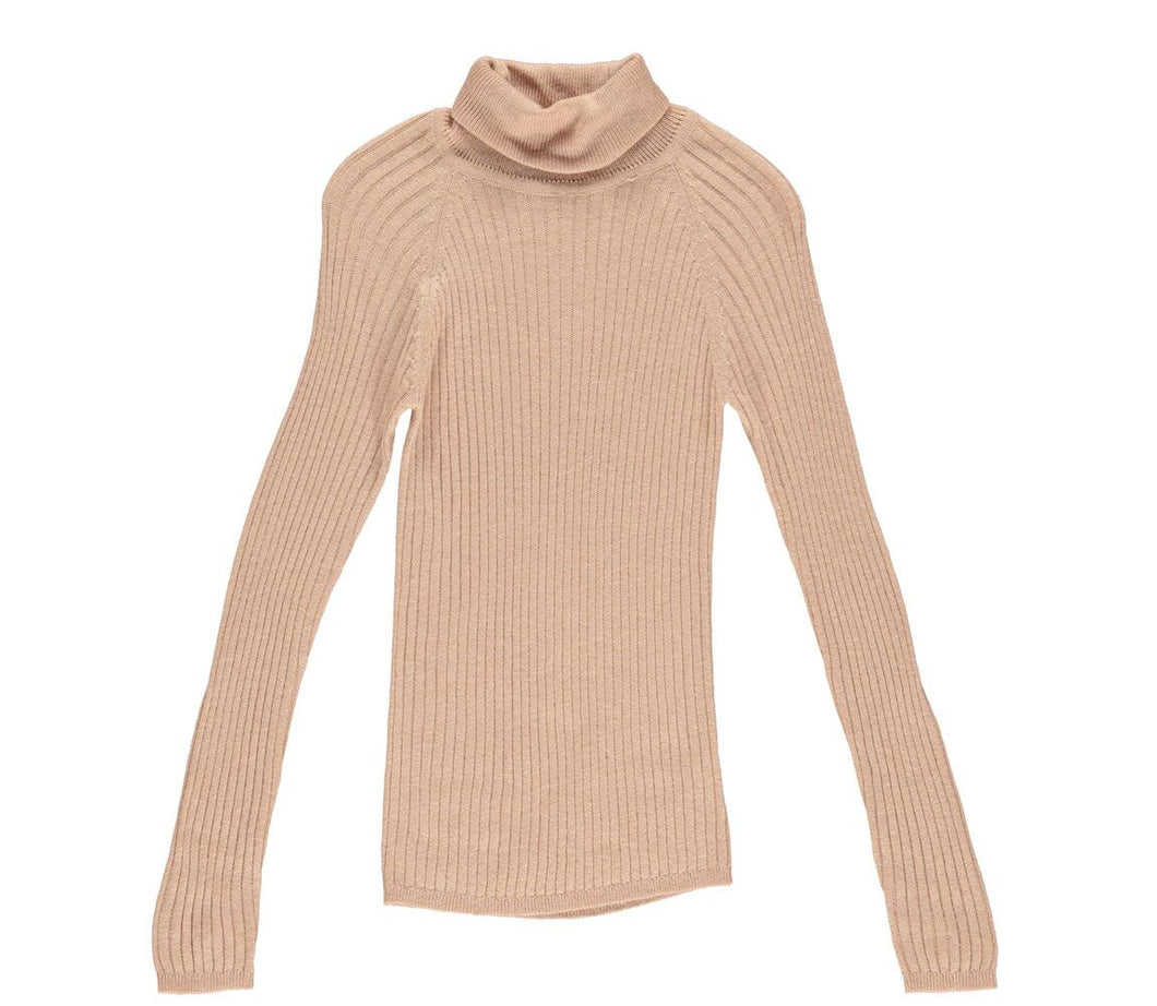 Sheer Rose Turtle Neck