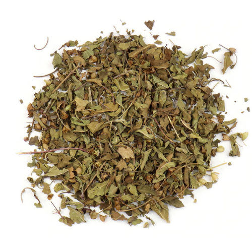 Organic Krishna Holy Basil (Fair Trade)
