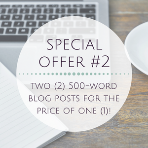 Special Offer #2 - Two (2) 500-word Blog Posts for the Price of One (1)!