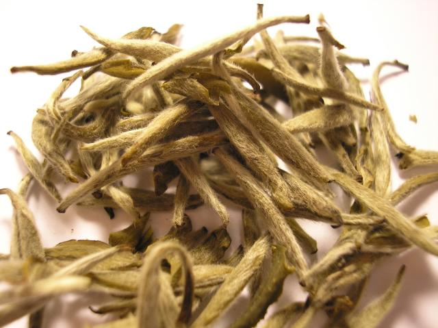 White tea, all about tea