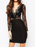 Black Sequin Panel Long Sleeve Lace Zip Back Bodycon Dress