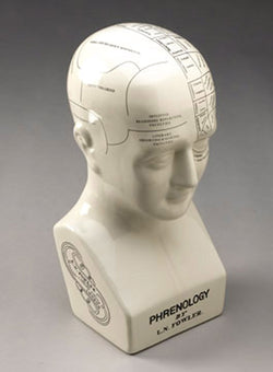 Black and White Scientific Porcelain Phrenology / Psychology Head Model