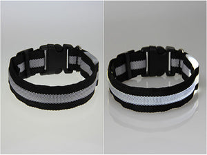 Bright Pet Light up Pet Collar