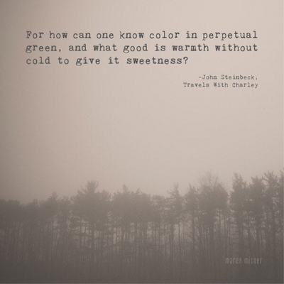 SALE - How Can One Know Color Steinbeck Quote - Print
