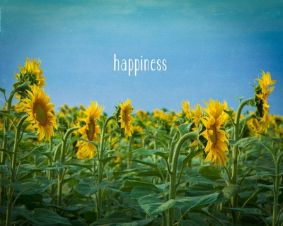 SALE - Happiness Sunflower Quote - Print