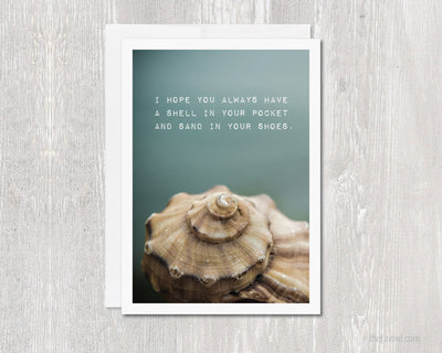 Greeting Card - Seashell