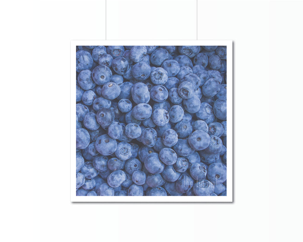 Blueberries Print | Kitchen Art Photography - The Tin Owl