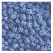 Blueberries Print | Kitchen Art Photography