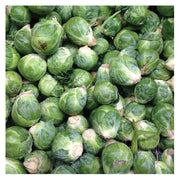 Brussels Sprouts Print | Kitchen Art Photography