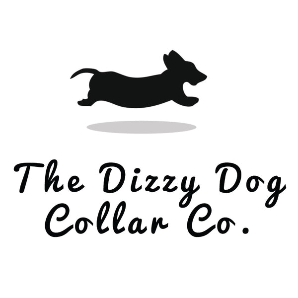 Dizzy Dog Collars