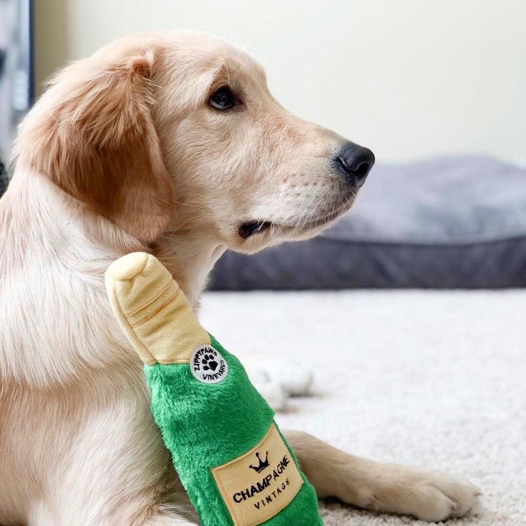 Happy Hour Crusherz – Champagne - Zippy Paws Dog Toy-Dizzy Dog Collars-Dizzy Dog Collars