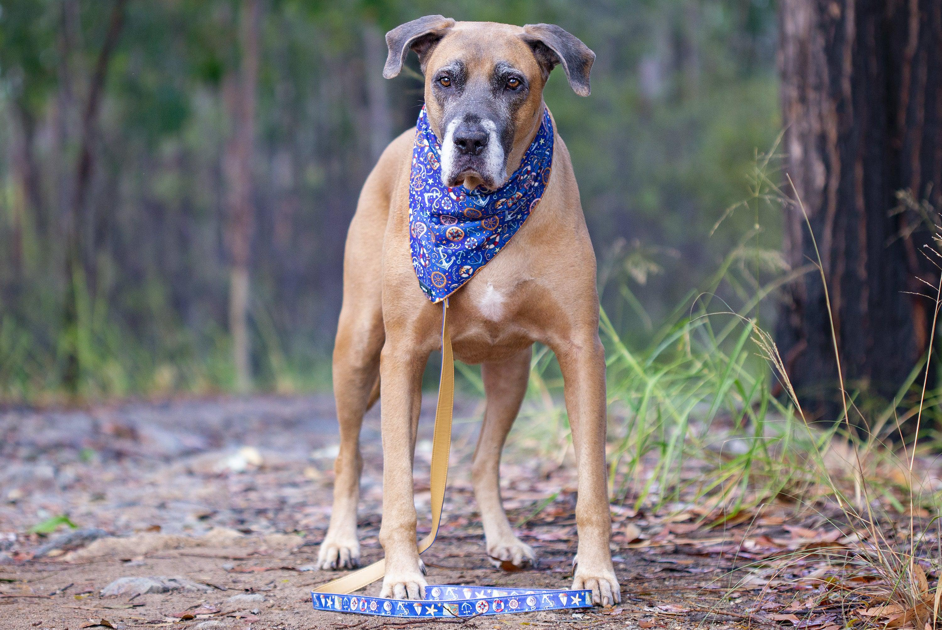 Dog Bandana - Tie Up Bandana - Nautical-Dizzy Dog Collars