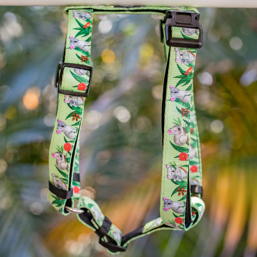 DOG HARNESS, Koala Print- Fully Padded H-Harness, With Front & Back Attachment - (Handmade to Order)