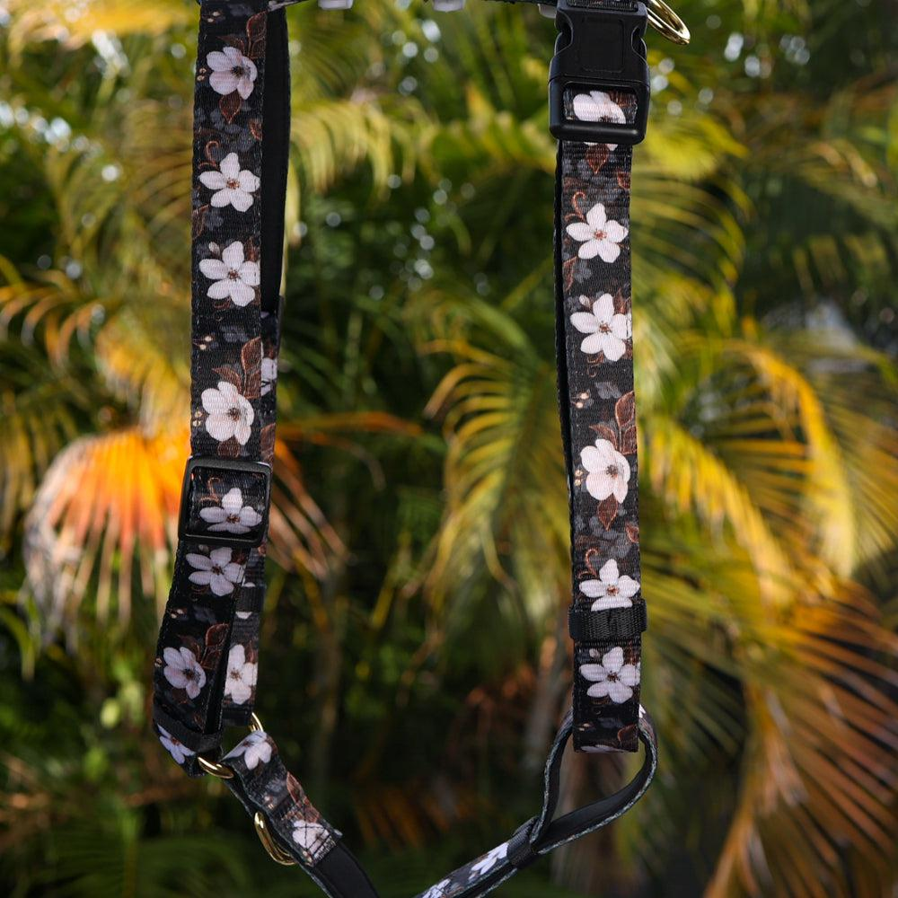 DOG HARNESS, Midnight Cherry Blossoms, Fully Padded H-Harness, With Front & Back Attachment-Harness-Dizzy Dog Collars