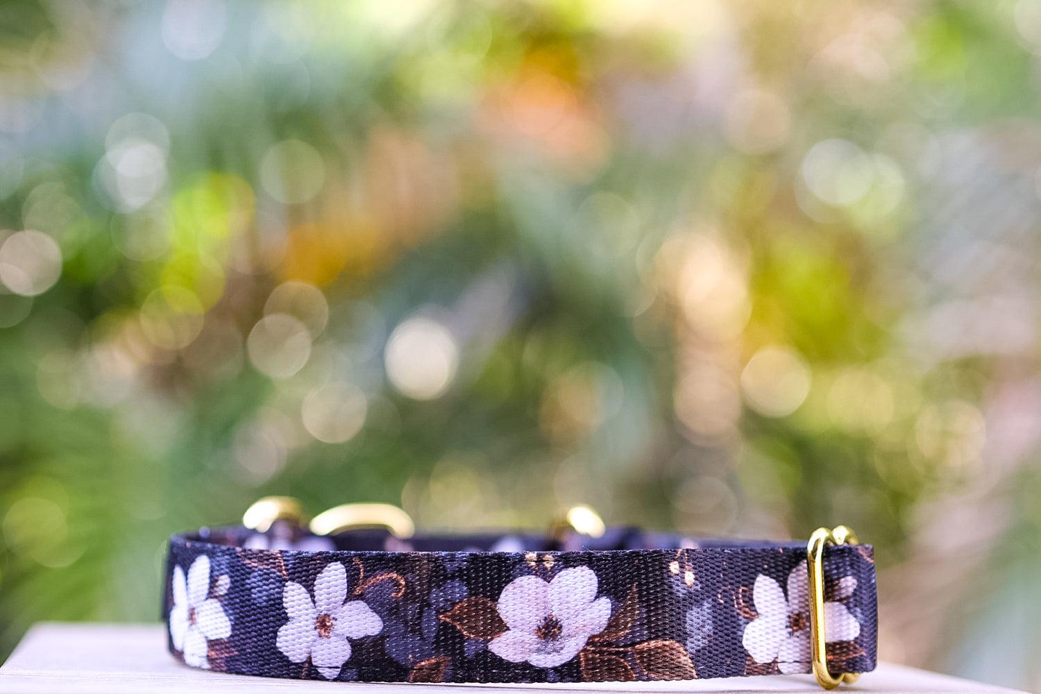 Martingale Dog Collar - Midnight Cherry Blossoms-Dog Collar-Dizzy Dog Collars