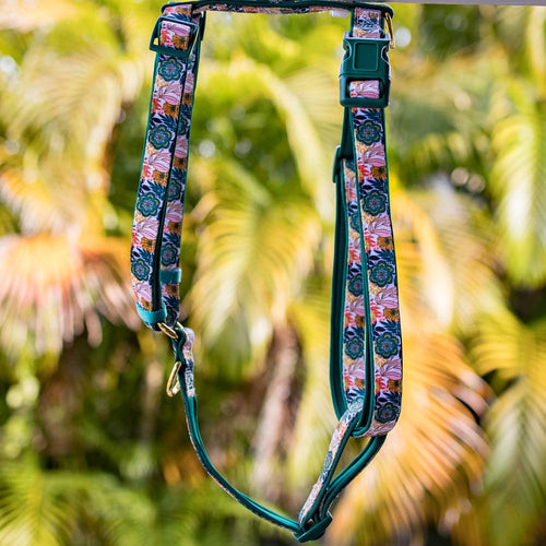 DOG HARNESS, Bohemian Garden - Fully Padded H-Harness, With Front & Back Attachment