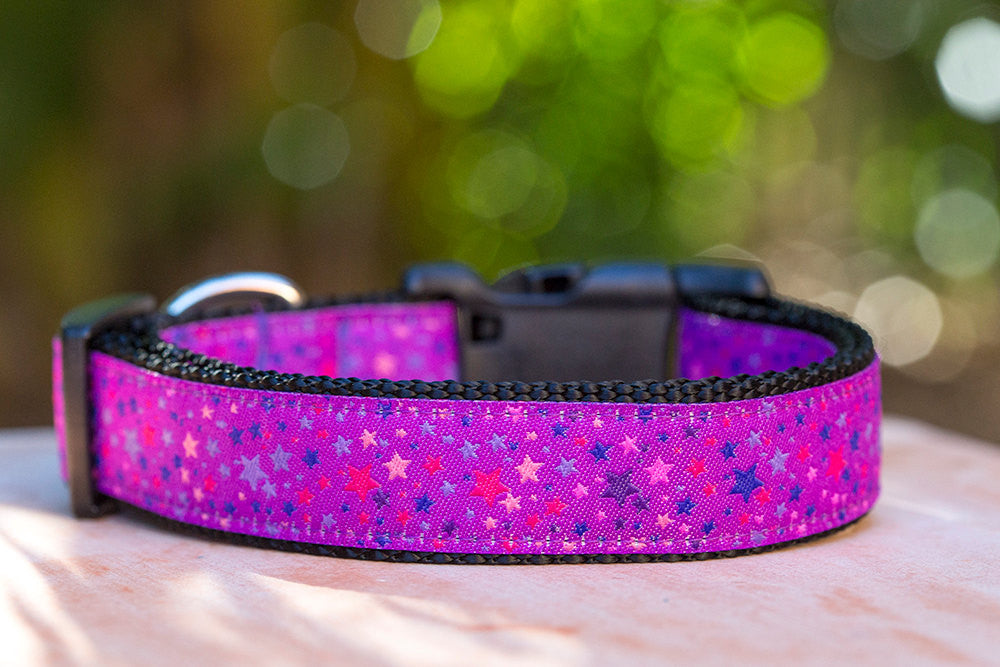 Purple Galaxy Dog Collar XS-XL