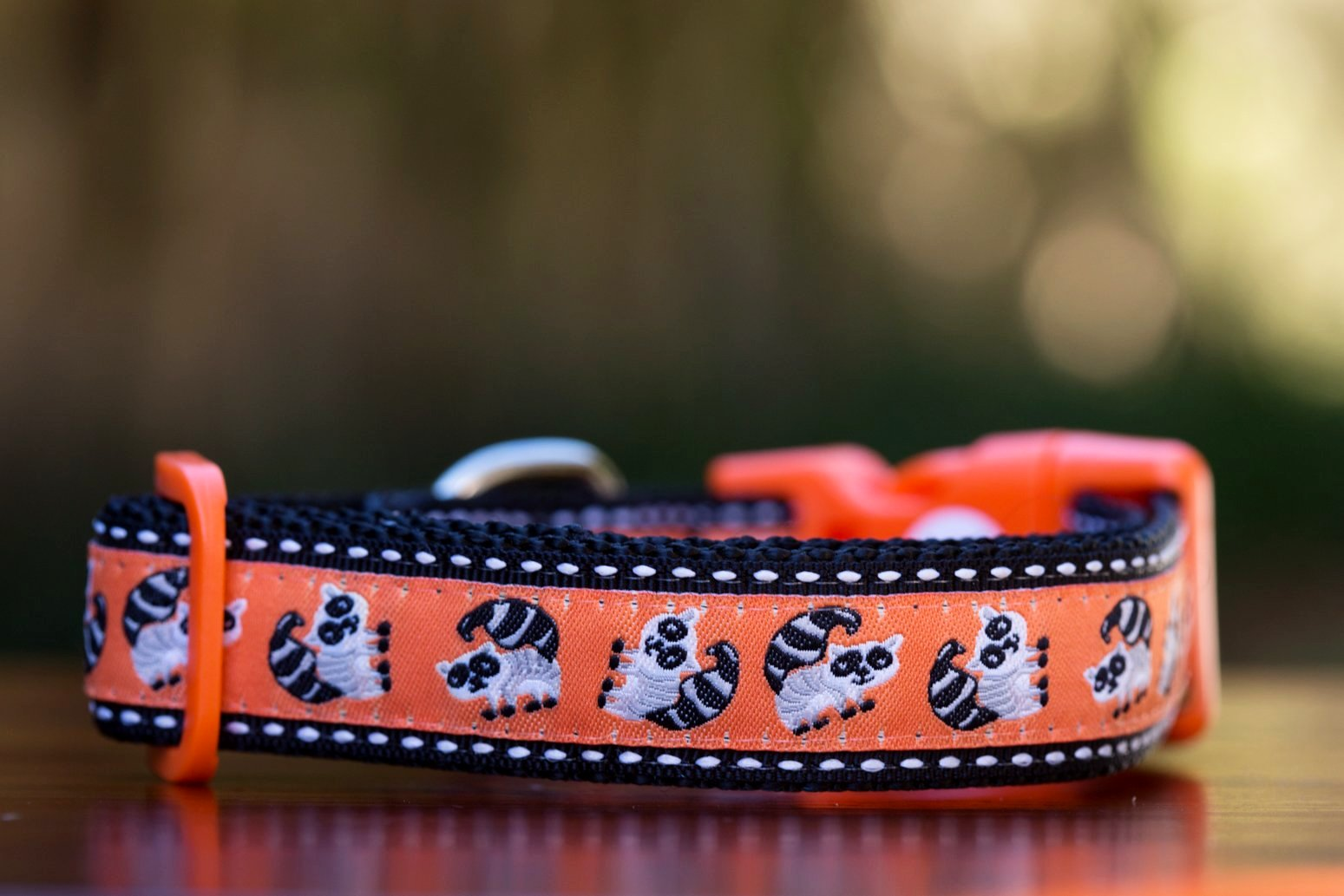Small/Medium Collar - SALE (2.5cm Wide)-Dizzy Dog Collars-Dizzy Dog Collars