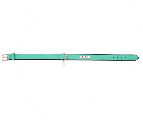 Vivid Collection Leather Dog Collar - Teal