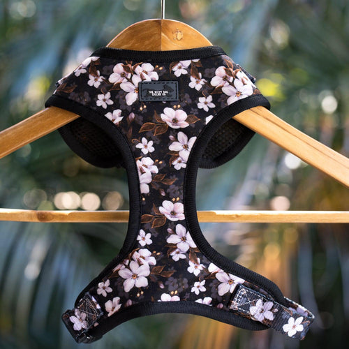 DOG HARNESS - Midnight Cherry Blossoms - Neck Adjustable Harness