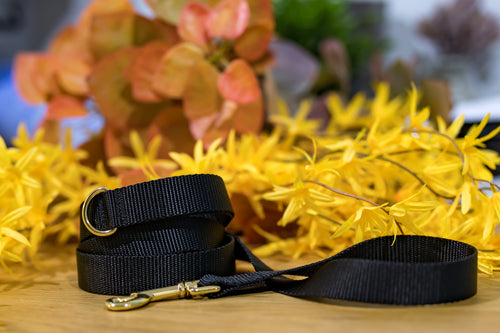 Black Leash with Gold Hardware -  Handmade to order