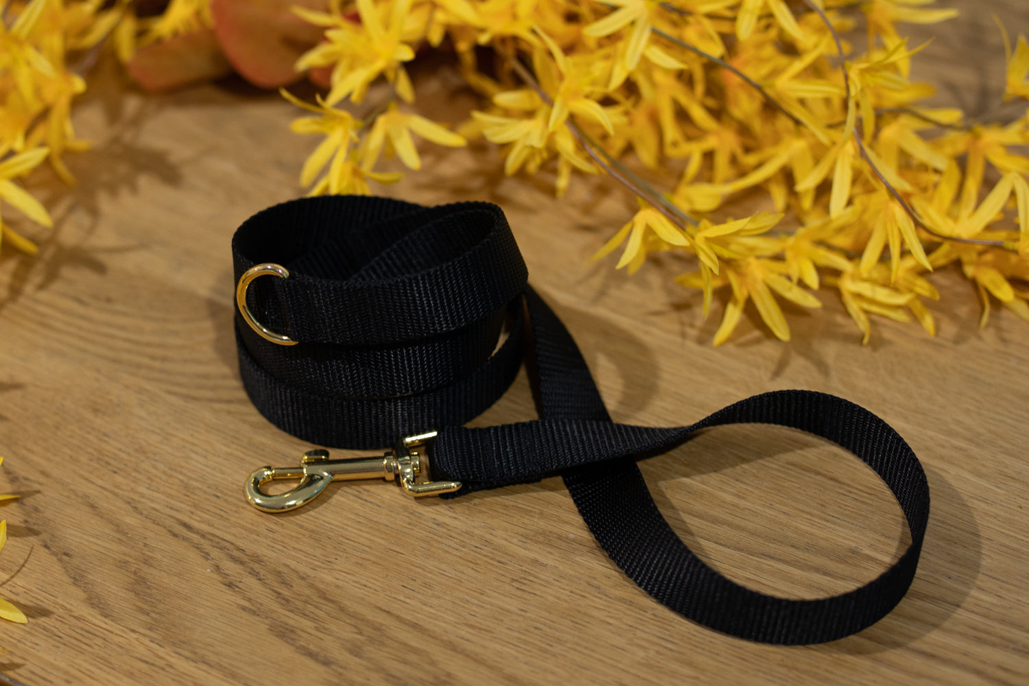 Black Leash with Gold Hardware - Handmade to order-Dizzy Dog Collars