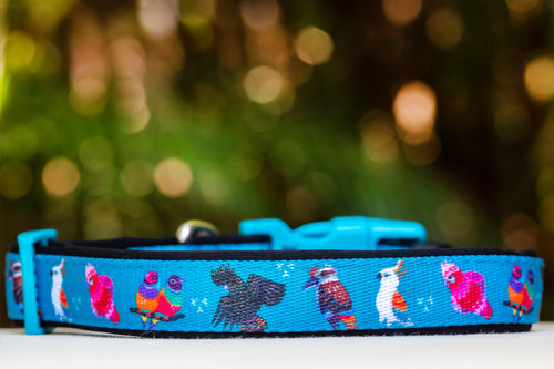 Aussie Birds Dog Collar