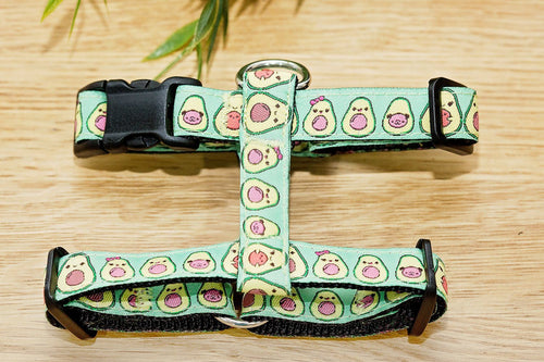 Avocado Harness / Dog Harness / H-Harness for Dogs