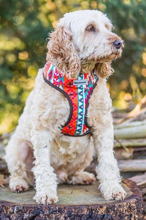 Aztec/Mexican Standard Fabric Harness