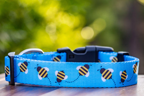 "Bee Dog Collar ""Value Range"""