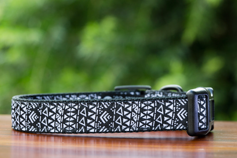"Knightsbridge Dog Collar / XS-XL-Dog Collar-Dizzy Dog Collars-XS 5/8"" (1.5cm) Wide-Black-Dizzy Dog Collars"