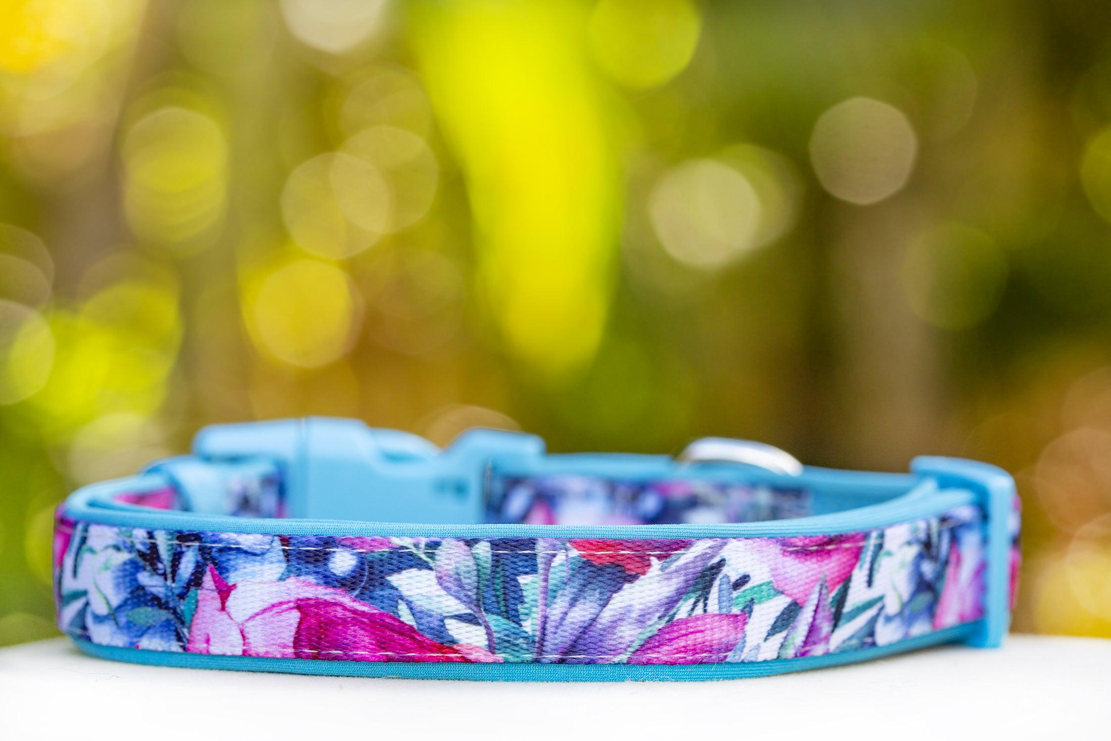 Blossom Rose Dog Collar (Premade)-Dog Collar-Dizzy Dog Collars