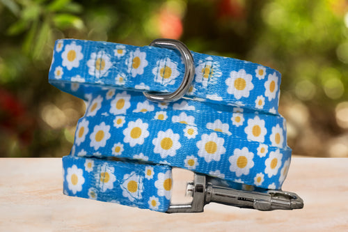 Retro Blue Daisy, Daisies Dog Leash